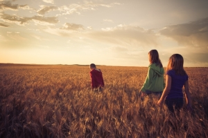 Agritourism-wheatfields in North Dakota